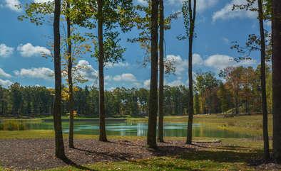 Golf Course Club House Pond