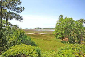 Long tidal marsh views