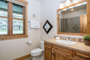 Shared full bathroom on the lower level with walk-in shower