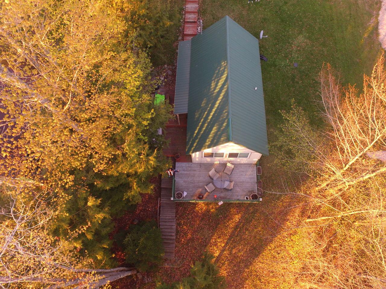Coleman's Cabin