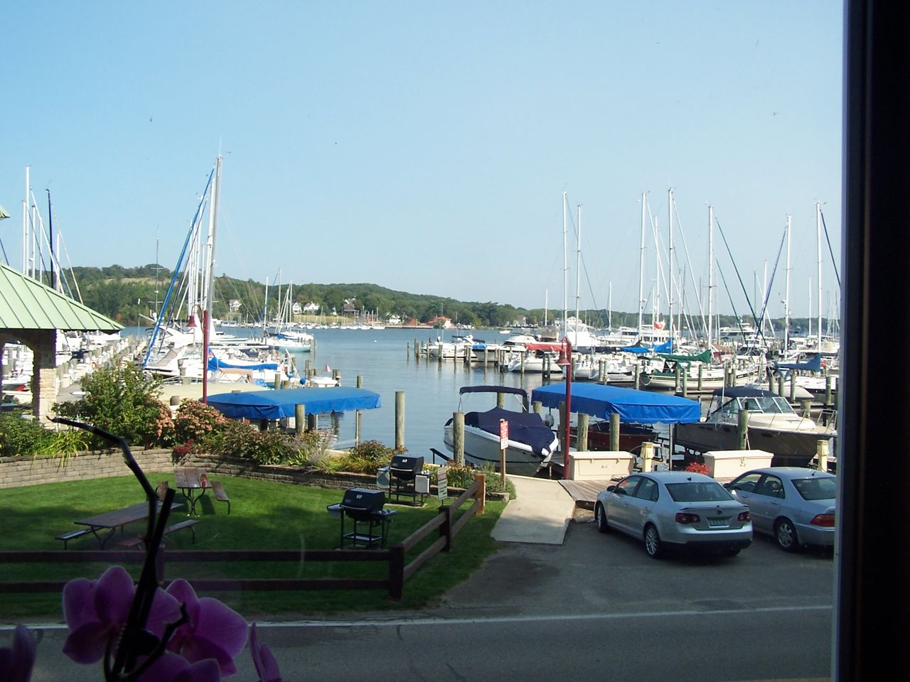 Front patio view of the marina in the summer