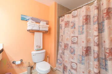 Coastal shower feel in bathroom