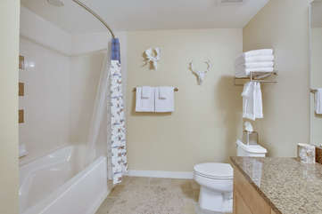 Fullsize guest bathroom with tub/shower combo