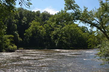 Tuckasegee River (Across from Community)