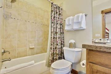 Lower level bunk room bathroom