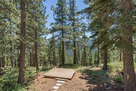 Deck overlooking forest