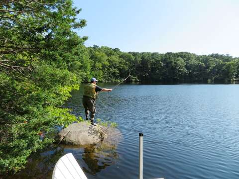 Or put your waders on and try your hand at fly fishing. Great fishing hole!! - 162 Owl Pond Brewster Cape Cod - New England Vacation Rentals