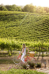 Let us help you arrange a day of Wine Country bicycling