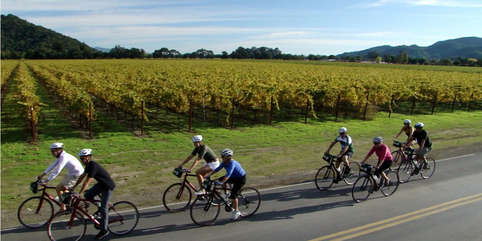 Whatever your fitness level, the wine region offers biking experiences with views from breathtaking to serene