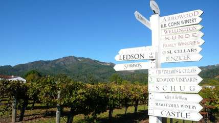 Which wineries to visit? Let our in-house sommelier curate a tasting tour just for you!