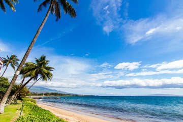 Beach on property