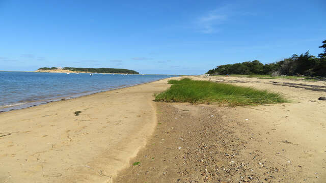 Enjoy the long stretch of beach! 66 Rush Drive Chatham Cape Cod New England Vacation Rentals