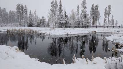 Beautiful pond after first snowfall