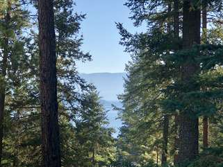 Tree Top Cabin upper deck mountain and Flathead Lake views