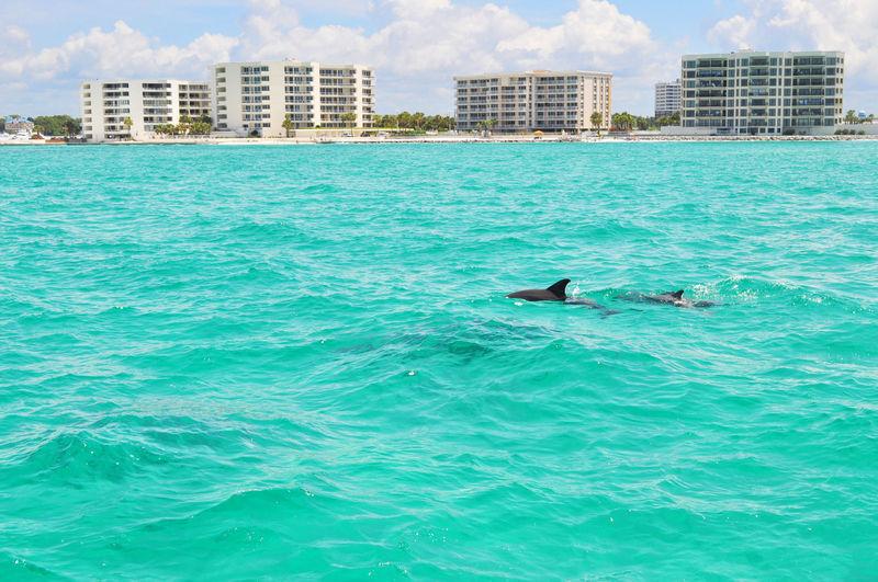Luxury 4 Bedroom Beach House in Miramar Beach, Destin FL