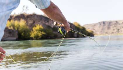 Fly fish Henry's Fork of the Snake River