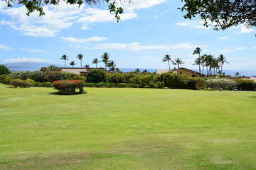 Gorgeous tropical and ocean view from lanai