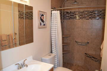 Bathroom with remodeled tile shower