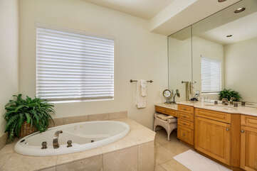 Master Bathroom Jacuzzi Tub and Vanity Space