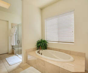 Master Bathroom Jacuzzi Tub and Walk-In Shower