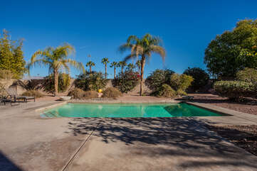 Landscaped Backyard and Pool Area
