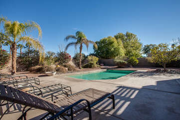 Another Look at the Backyard and Pool