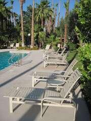 SunSational Poolside