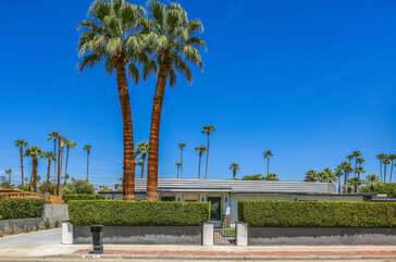 Mature Privacy Hedges and Palms