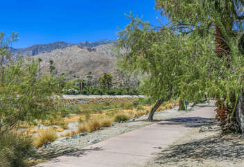 Nature Views and Walking Paths Across the Street