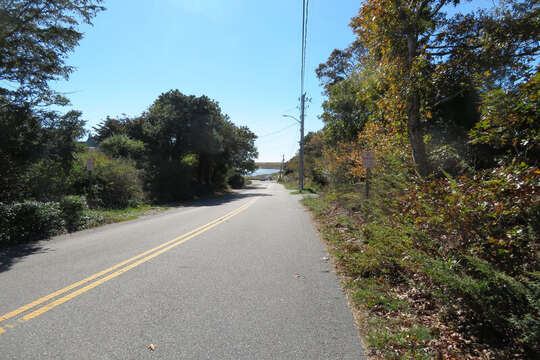 In front of home - Just 300 Yards to the waters edge! Barn Hill Road Chatham Cape Cod - New England Vacation Rentals