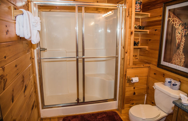 Bathroom with Walk-In Shower and Toilet.