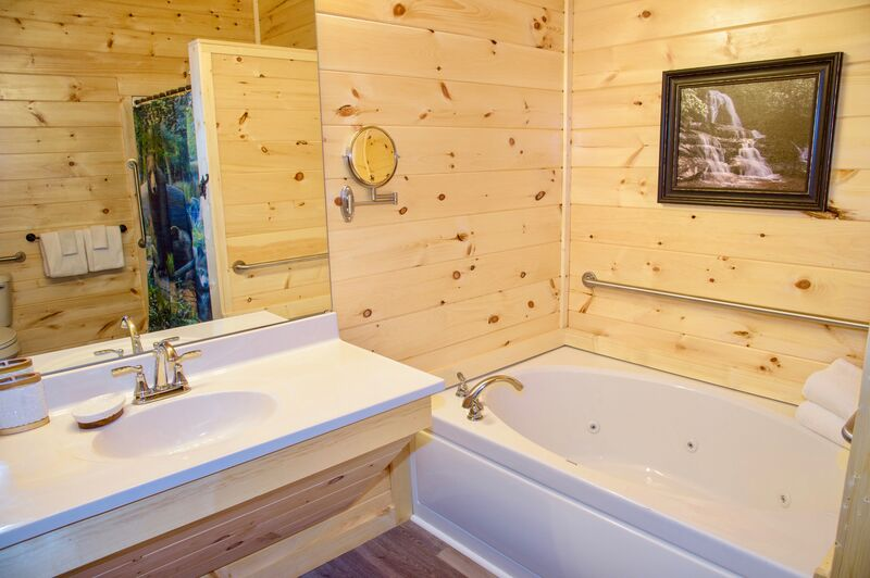 ADA Accessible bathroom with Pine Walls and Picture
