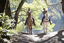 Two People Riding Horses on a Gatlinburg Trail