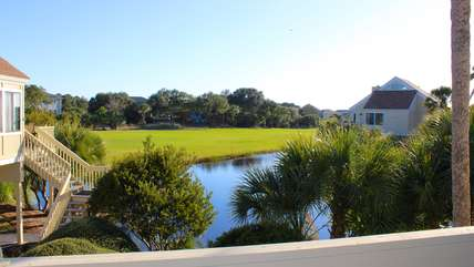 Egrets, fish, pelicans, & even alligator can be seen from this cottage.