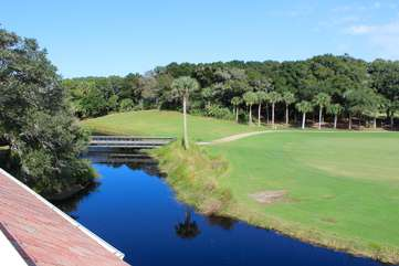 There is a lagoon too -- watch the lovely birds, alligators and fish jumping!