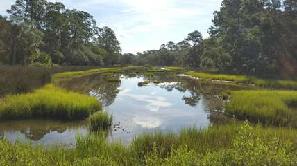 Serene beauty of one of Seabrook's countless marshes, with an abundance of wildlife