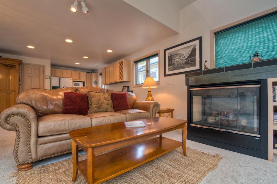 Living Room Sofa and Fireplace