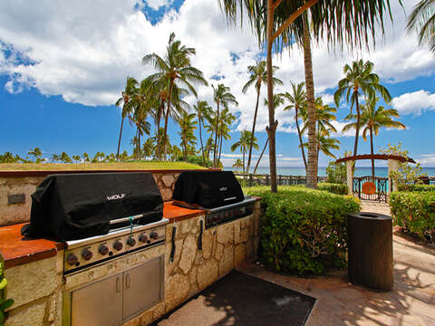 Tow of the Four Barbecue Grills on the the Beach Villas Property