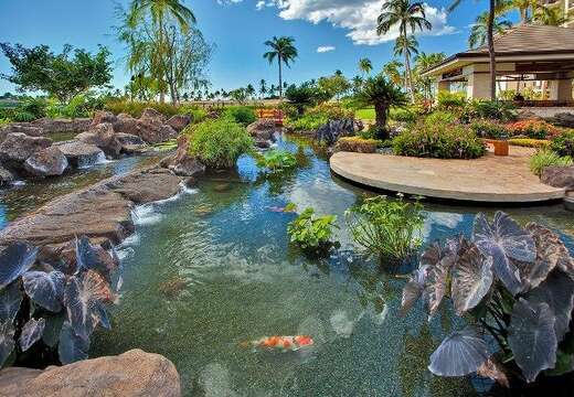 Relaxing Koi Pond Outside our Ko Olina Resort Vacation Rental