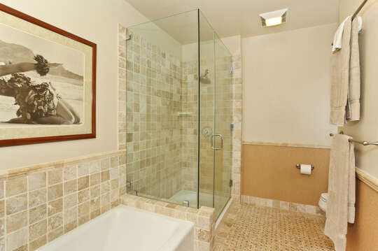 Walk-in shower and tub in a separate room of the master bathroom.