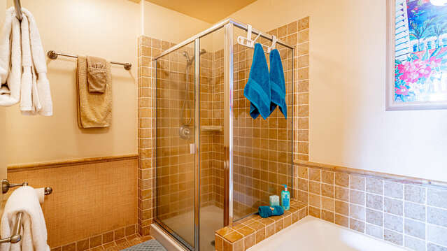 Walk-in Shower and Tub in Master Bath