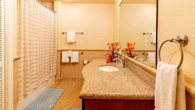 Second Full Bathroom Features Sink, Toilet, and Shower.