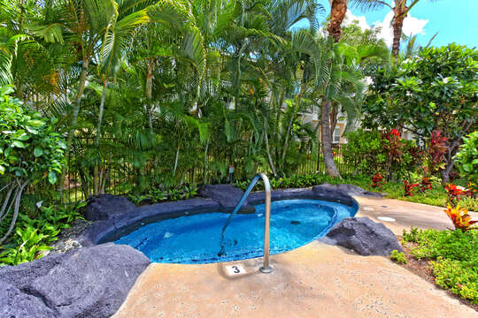 Outdoor Hot Tub with Handlebar, and Palm Trees.