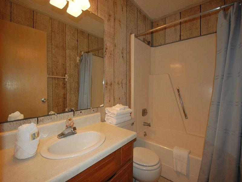 Common Full Downstairs Bathroom