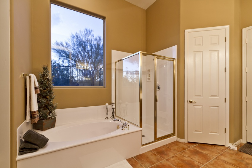 Master Bath Separate Tub and Shower