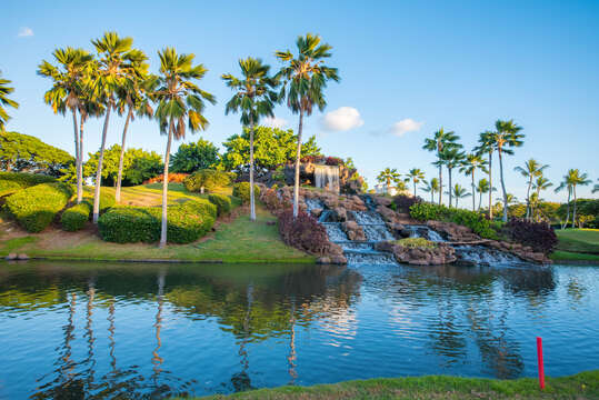 Waterfall in a Pond with Palm Trees.