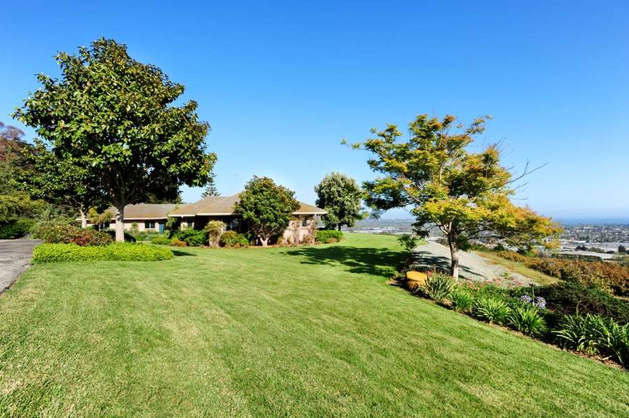 Single story Ranch home on avocado orchard