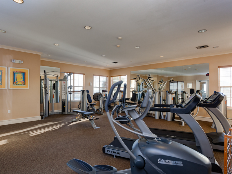 Fully equipped Fitness Room