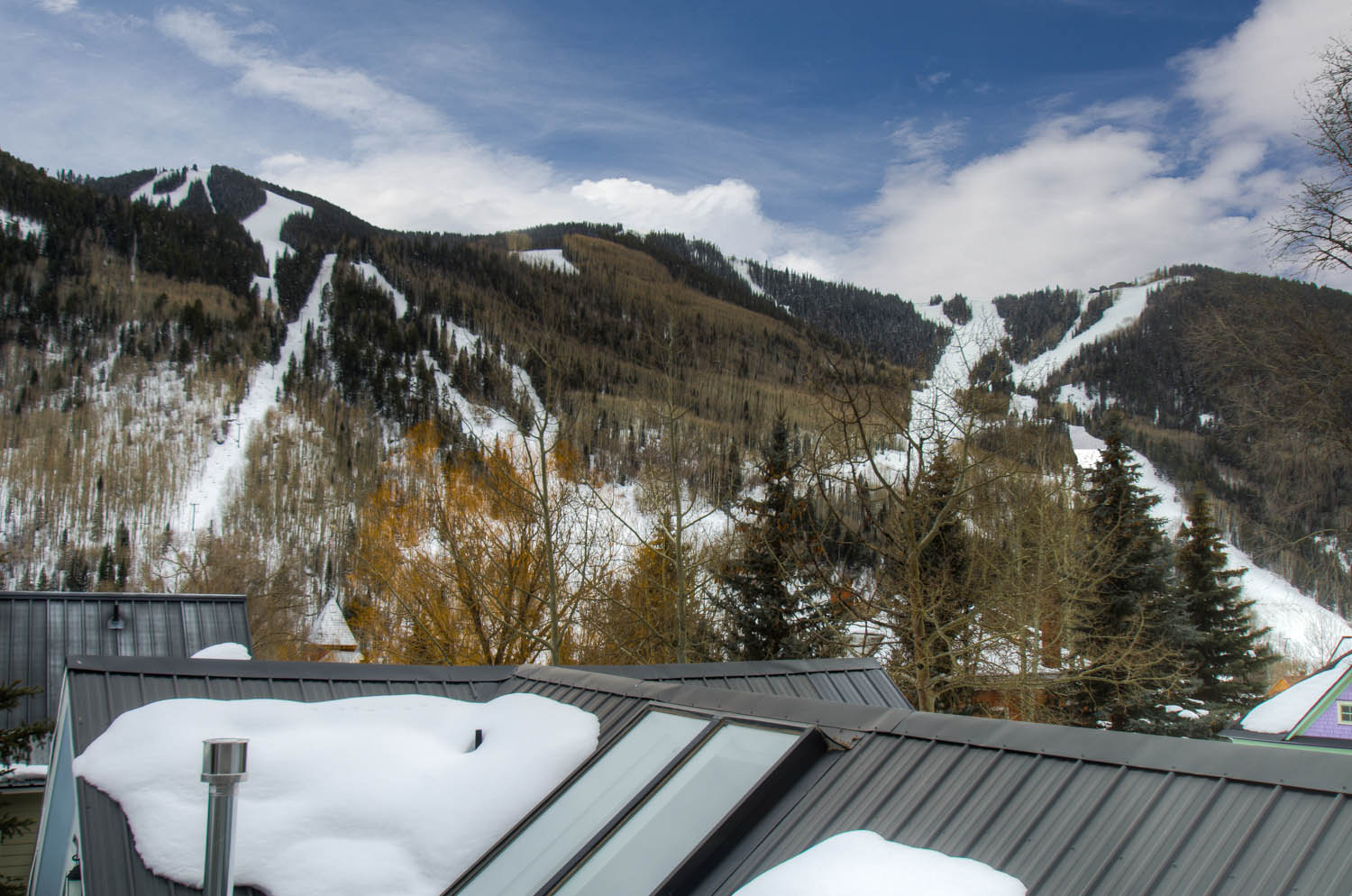 Views of Rooftops and Ski Slopes near Vacation Home in Telluride