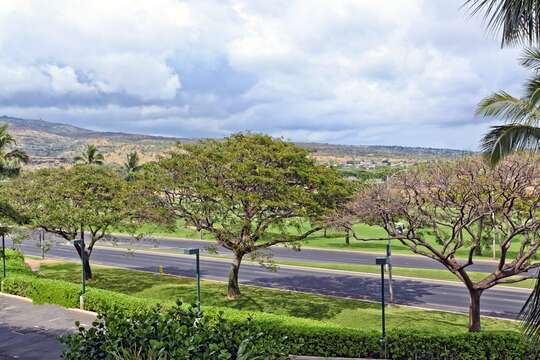 Gorgeous Landscape Views Outside our Beach Rental in Oahu Hawaii